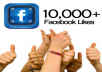 give 10000 permenent Fb likes to your web site in 24 hours