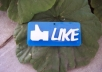 Give you 110+ Facebook fan likes on your any fan page not from bot