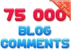build over 75000 Instant Blog Comments as S E O  Backlinks and ping