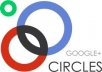 provide you 300+ real human verified Google+ circle for your any kind of Google account