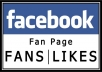 I will give 3000+ Facebook likes on your facebook FANPAGE in 24 hours