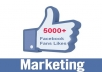 I will provide 5000+ FACEBOOK followers/post likes