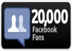 I will supply you real 20,000 USA + facebook website [no fanpage] likes in 48 hours only today order now