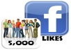 add 5000+ facebook likes to your fanpage