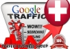I send 1000 visitors via Google.ch Keyword to your website