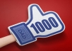 i will give you 100% Real 1000 facebook likes with in 24 hour