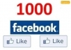 provide you 1000+ High Quality Facebook Likes on your website