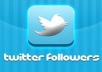Get You Now 5000+ Stable twitter followers to your twitter account