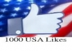 I will give you 1000 USA Facebook fanpage likes, quick and safe delivery excellent service