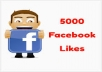 get you 4500+ Facebook Likes , Best Quality and Authentic With in 48 Hours