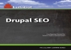 I will Give You Lullabot – Drupal SEO