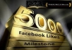 will add 5000++ Facebook likes in your Facebook FanPage