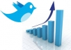 Give You 230+ Twitter Followers 100% real & Manually Without any robotic Software only