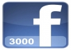 Get You FAST 3000+ Real Facebook Fan Page Like within 6hrs
