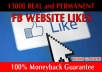 give 15000 Facebook Website LIKES [No Fan Page] Within Just 24 Hours