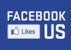 send 1,450++ Real Looking (Guaranteed) and Permanent Facebool likes to your fanpage less than 24 hours