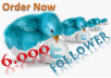 give you 6000+ twitter followers within 24 hours