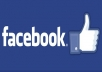 add 15000+ Facebook likes at your fan page with out admin access
