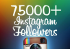 give you 75,000 ++ (75K) Instagram follower, Limit time offer, you can order many time, i will provide you 1million followers