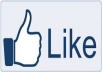 give 1000+ Best Quality Facebook Likes,Facebook Fans To Fanpage In Few Hours for