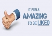 give 100 facebook likes with in 5 hours
