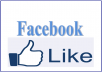 Give You 2500 ++ Facebook Likes Fans Page