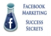 Show you how to make 500 Dollars Everyday With Your Facebook Fan Page