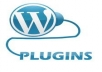 Give You Popular Wordpress Plugin Profiles Videos and PDF