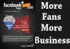 Get You 500 Facebook fans  With Instant Delivery