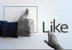 give Express 1600+ Facebook likes with in 24 hours and Tweet your page to 1500+ twitter followers