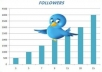 send 22,222 twitter follower on your profile maximum followers have pictures, bio and english without needing admin access