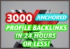 Create 3000 Profile Anchored Text Backlinks of Your Website in 24 Hours