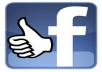 Provide 100 real facebook like
