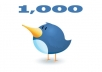 give you 1.000 Real Followers on your twitter without needing password!