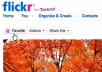 give you 4444 Flickr views and 50 favorites in 48 hours FAST Help you get High search ranking on Search Engine