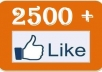 give you 2500 facebook likes or fans to your fanpages or website within 48 hours