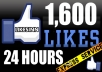 give 1600 facebook/likes with in 24 hours