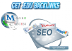 create 200 EDU backlinks and 500 Com Backlinks for your site with blog comments, and provide you with complete backlinks report