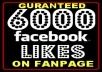 Get You 6000 FACEBOOK likes In Less Then 48hr