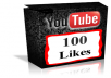 provide 100% real 100 youtube like