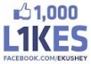 give you 1050 facebook page like only