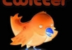add 25000+ twitters folowerz to your existing account without the need of your password