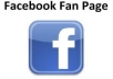give you 100 facebook fan page like for new facebook fan page