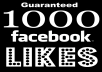 Give You 1000 Facebook Likes to Any Website Domain in 24 hrs Guaranteed