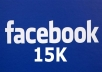 provide you real 555 facebook fan page like