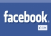 give you 1000 VERIFIED authentic facebook likes guaranteed safe to any domain website webpage blog in 24 hours