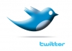 provide ★30,000+ twitter followers★