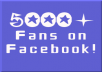 provide you 5000 facebook fan page like for new fan page