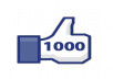 give you 1000 real international facebook likes