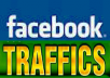 Give you 500 Real Active People Facebook Likes